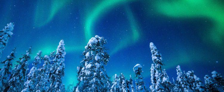 Séjour groupe CE en Laponie